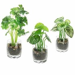 MyGift Artificial Tabletop Plants in Round Glass Pots, Set o