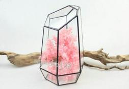Glass Terrarium/mini Greenhouse/ Tabletop Succulent Planter/