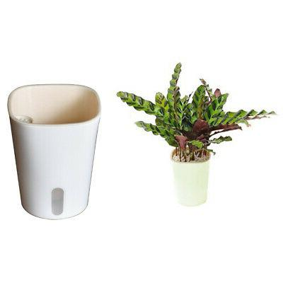 Self Watering Planters Modern Decorative Flowers Pots for In