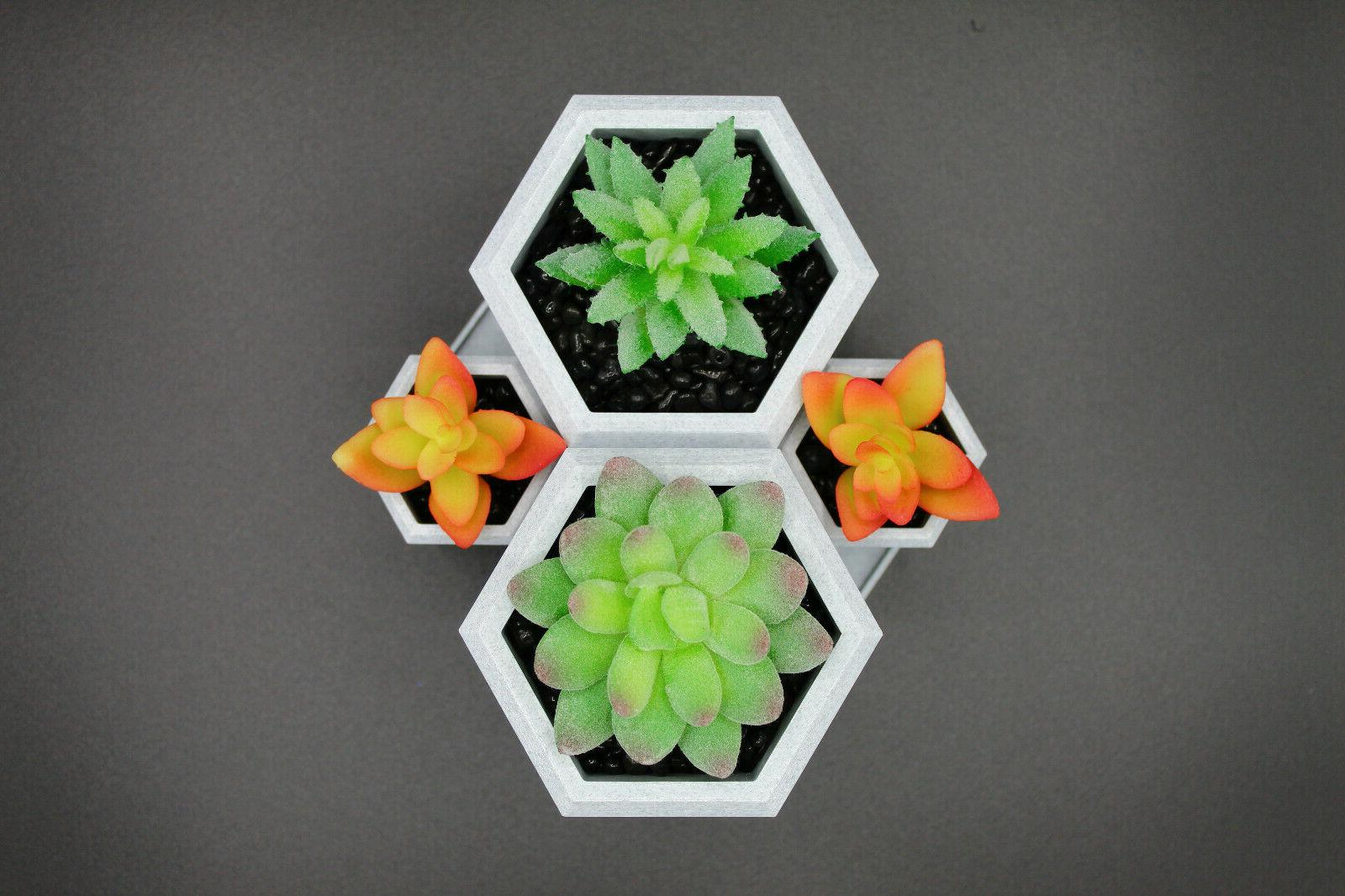 3D Printed Tabletop Succulent Made USA