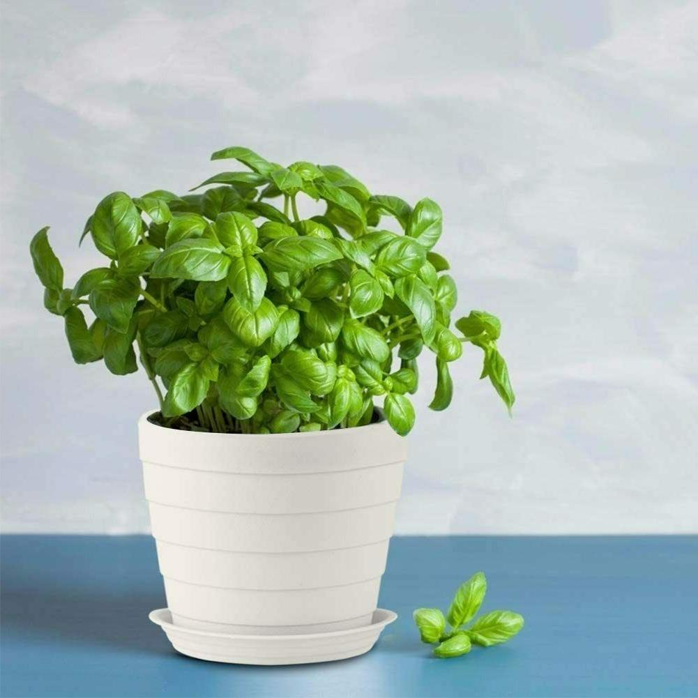 6.7'' Plastic White Flower Pots with Holes Saucers