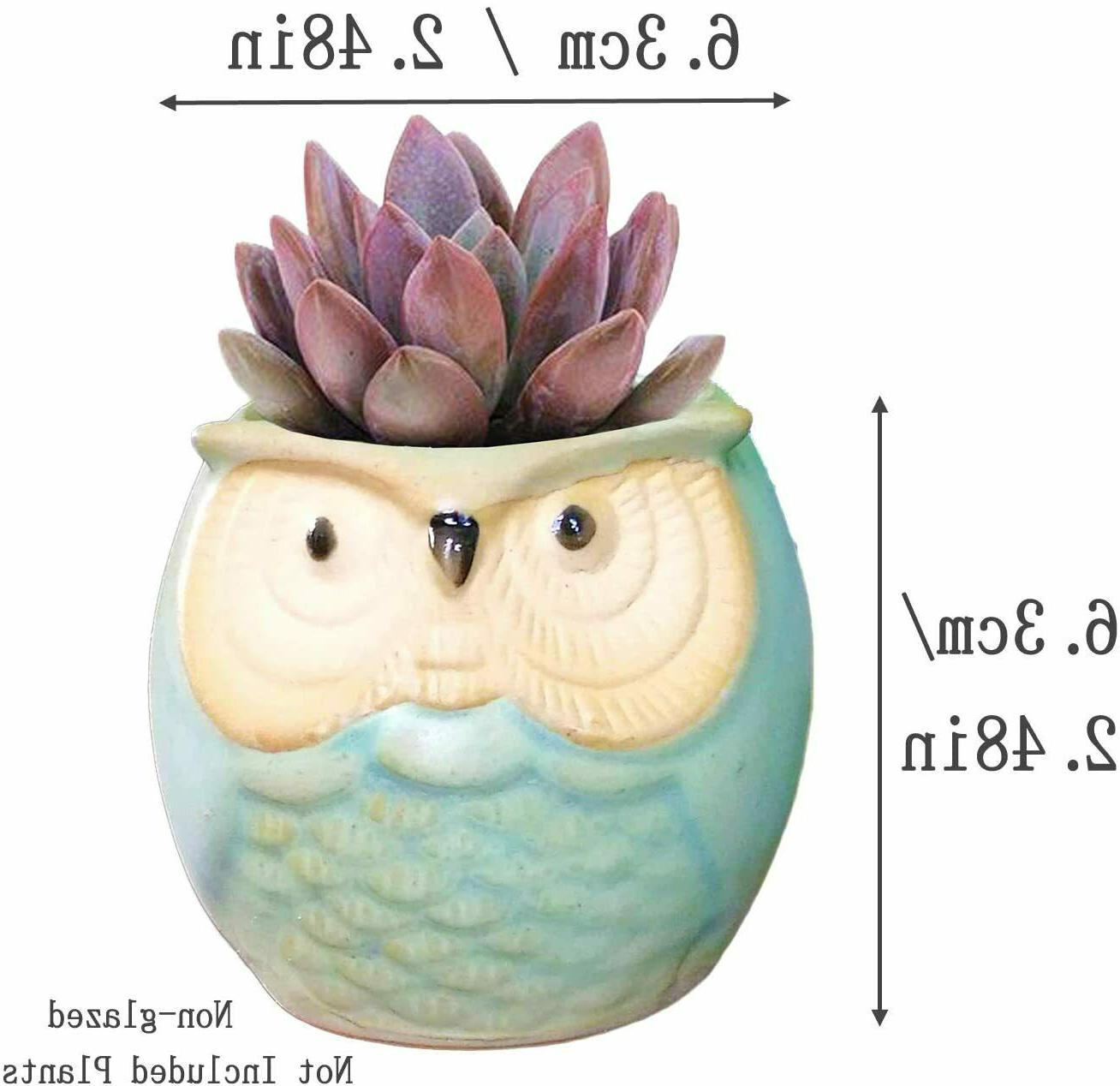6 Pcs 2.5 Inches Ceramic Owl Succulent Planters with Holes