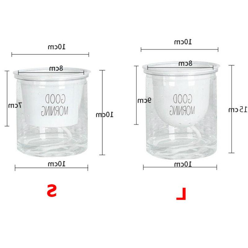 Clear Pot Planter For Indoor Outdoor