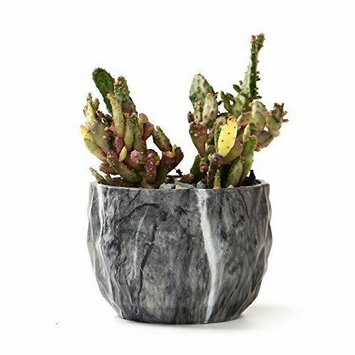 Marbling Flower Succulent Pots with Hole of 4