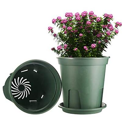 Plant Inch,EHWINE Set Flower with and
