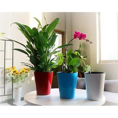 Plants Red
