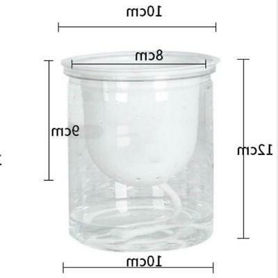 2pcs Self Planter Indoor And Outdoor Flowers Clear