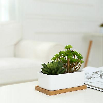 White Planters, Set of
