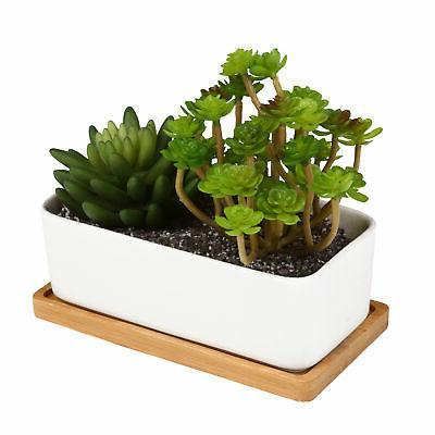 Planters, Removable Set of
